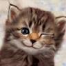 Аватар для Эдуард Порфирьев